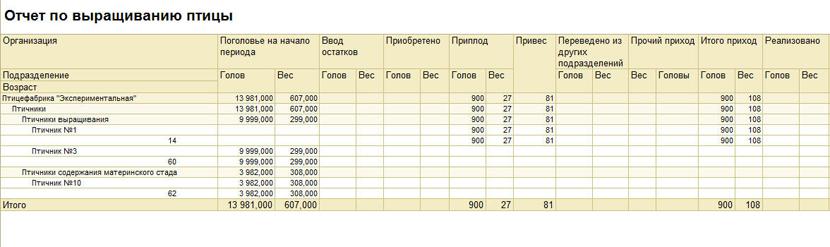 1С ДНР, 1С Донецк, Отчет по выращиванию птицы